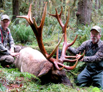 Elk hunting - Vancouver Island, BC, Canada